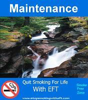 EFT Maintanence Scripts